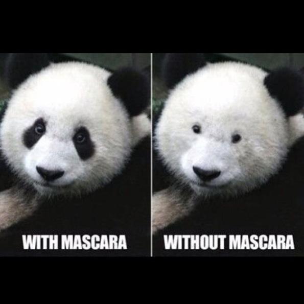 Mascara and Pandas