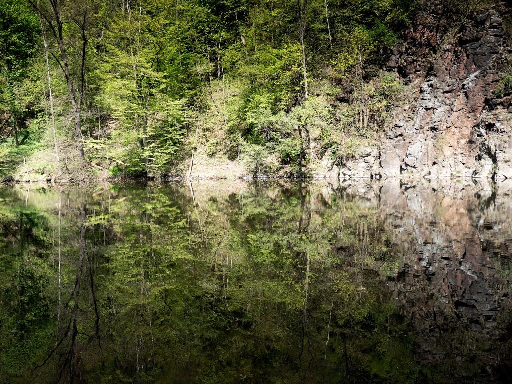 Frühling und jede Menge Grün an der Mulde in Kriebstein
