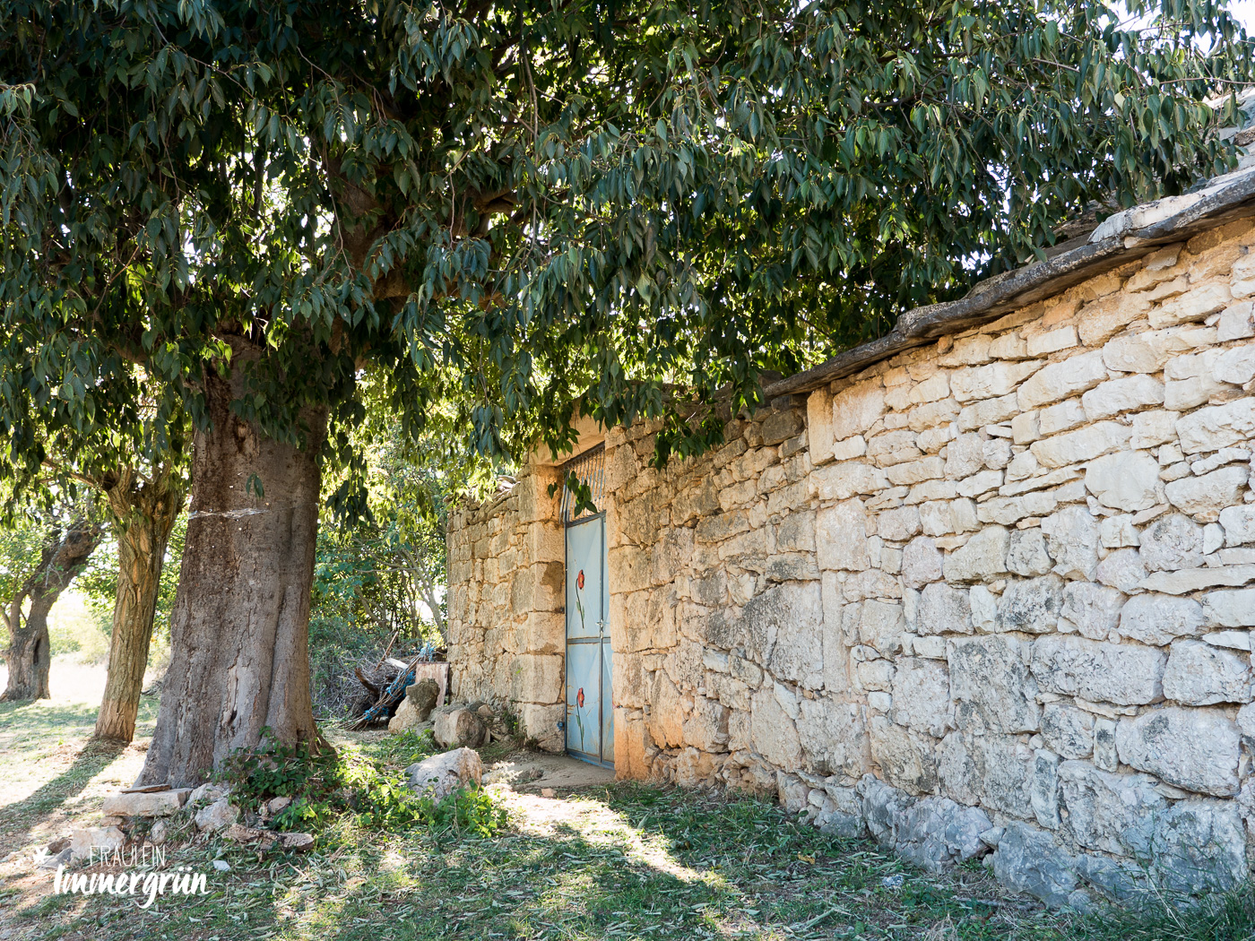 Dalmatien in Kroatien: Urlaub an der dalmatinischen Küste in der Nebensaison – Rundfahrt um den Nationalpark Krka