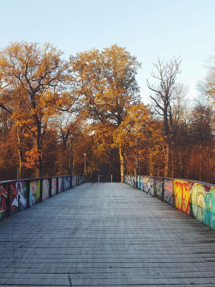 Leipzig Natur pur Pferderennbahn, Clara-Zetkin-Park, Elsterkanal