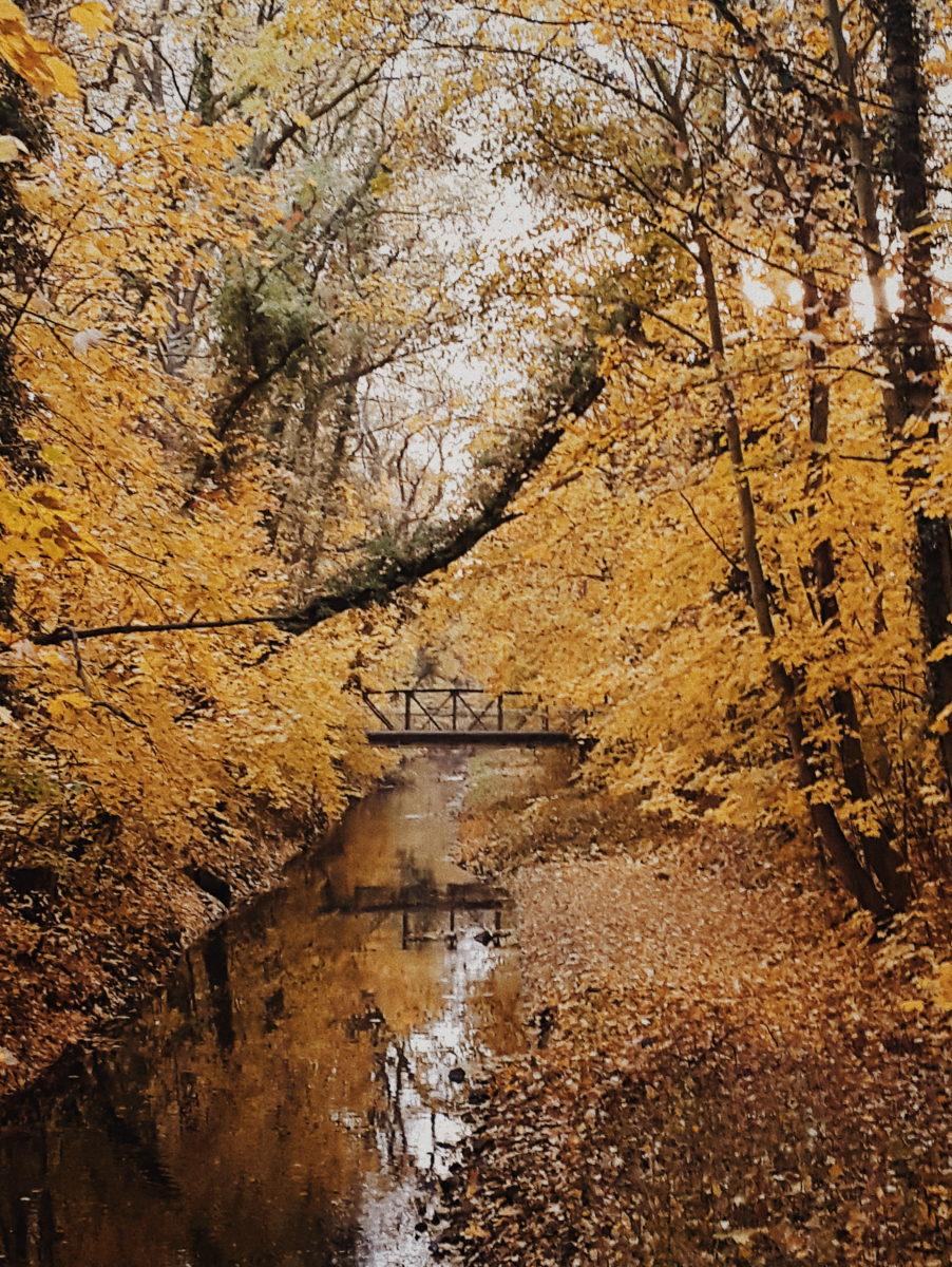 Leipzig Einfach raus in die Natur in Gohlis und Rosenthal